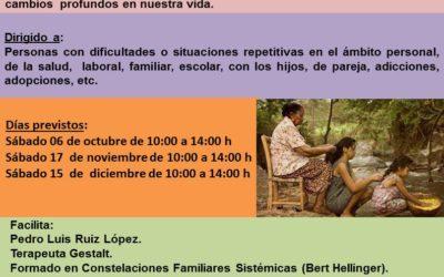 TALLER GRUPAL: CONSTELACIONES FAMILIARES